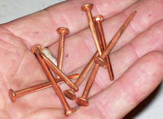 Photo of 1.5 inch square copper nails.