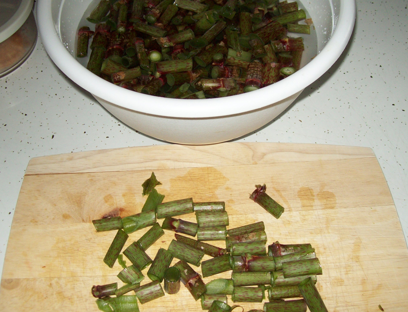 photo of sliced Japanese Knotweed shoots getting ready for washing.