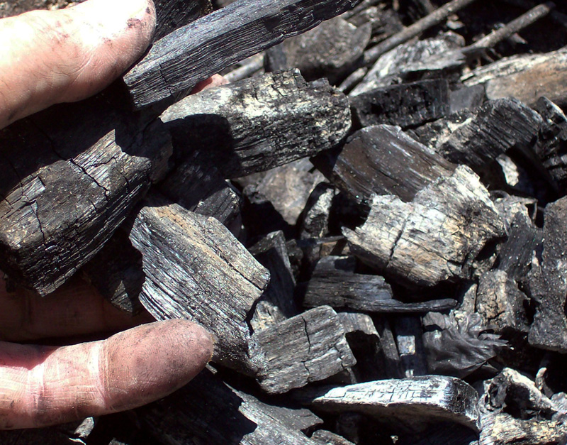 photo of lump charcoal pieces being held to show the size.