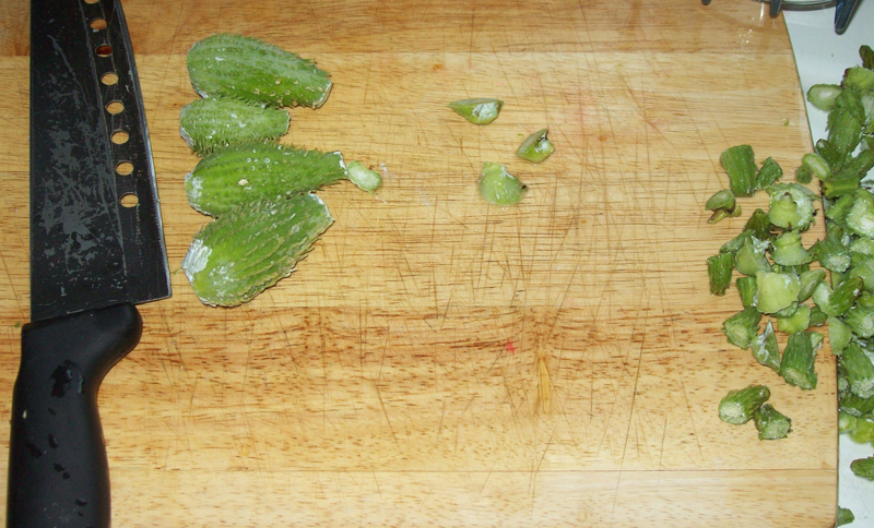 Photo showing common milkweed pods being sliced - Asclepias syriaca.